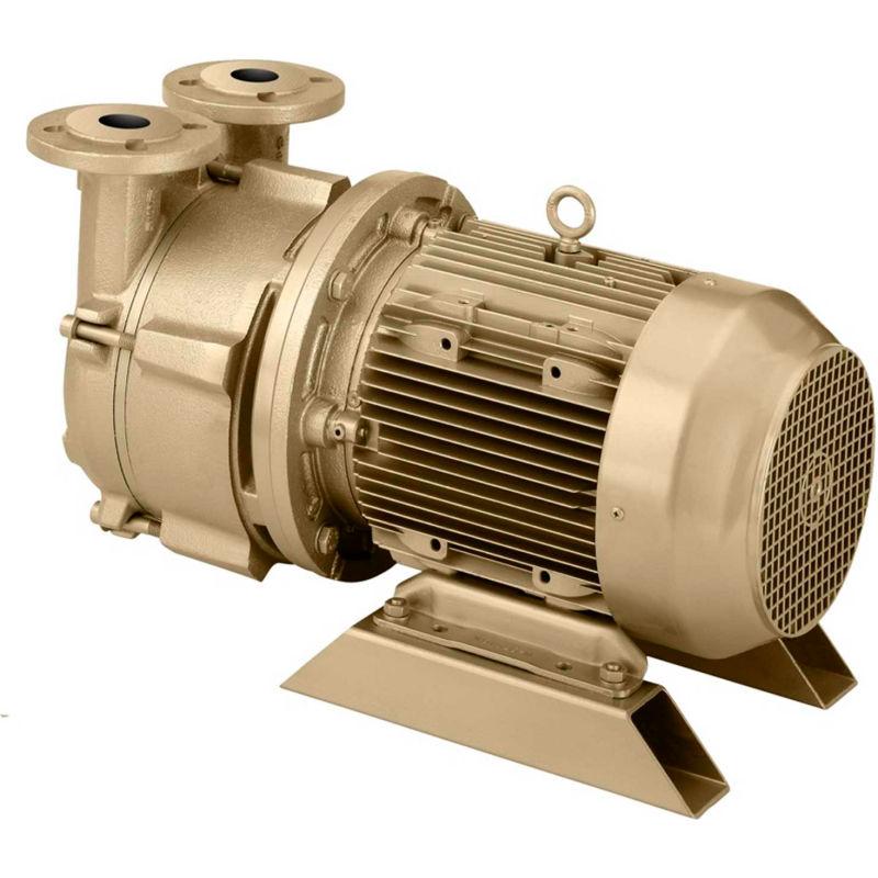 liquid ring vacuum pump - dekker
